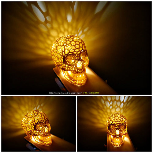 container_skull-lamps-voronoi-style-3d-printing-27685