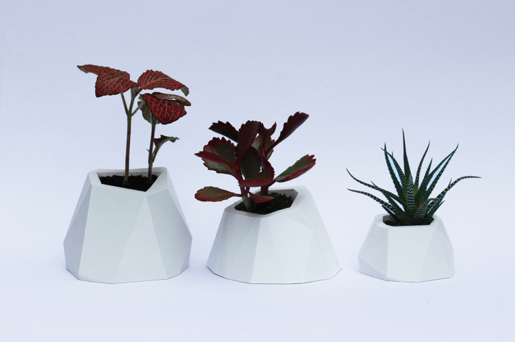 faceted planters microworkshops pinshape 3d designs