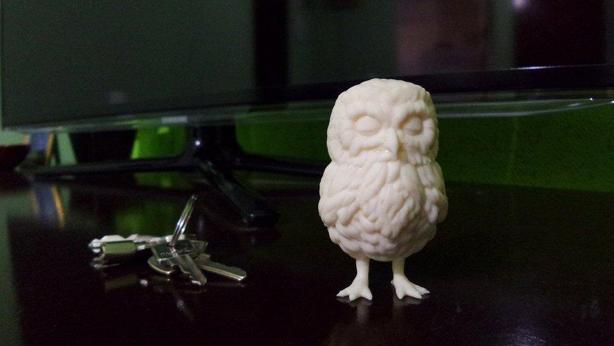 3d printed owl 3d designs pinshape