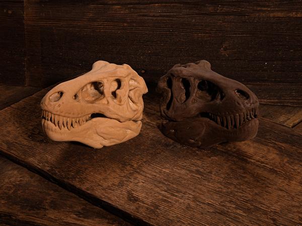 t-rex-after43